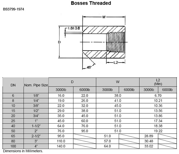 Asme b bs threaded boss manufacturer exporter