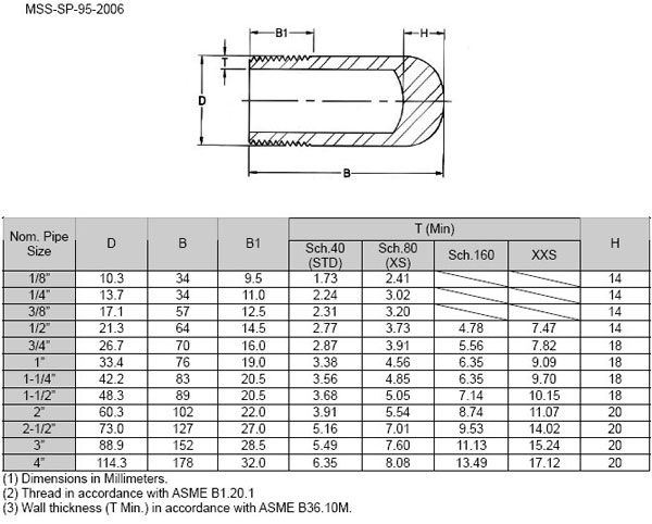 Asme b bs threaded bull plug manufacturer